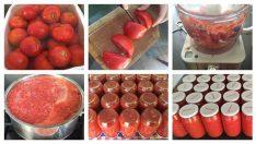 Canan Karatay usulü Ev yapımı domates konservesi