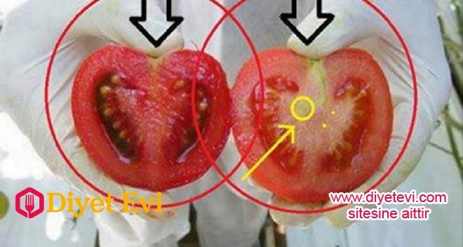 www.diyetevi.com GDO'lu domates nasıl anlaşılır