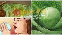 Lahana yaprağı bal ile öksürük bronşit tedavisi