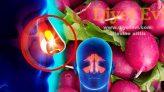 Yaban turbu ile Migren ve sinüzit tedavisi nasıl yapılır