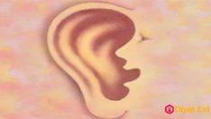 Kulaklarınız Sizin Hakkınızda Ne Söylüyor?