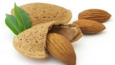 Metabolizma hızlandıran 10 yiyecek